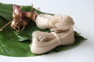 Arrowroot vermicelli